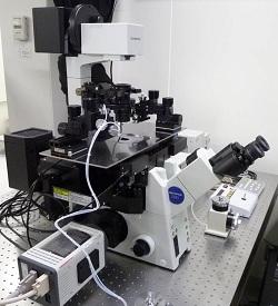 長時間撮影蛍光イメージングシステム<br>Time-Lapse Fluorescence Microscope